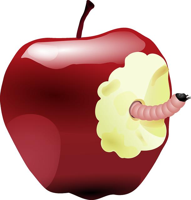 Verontwaardiging rode appel met worm